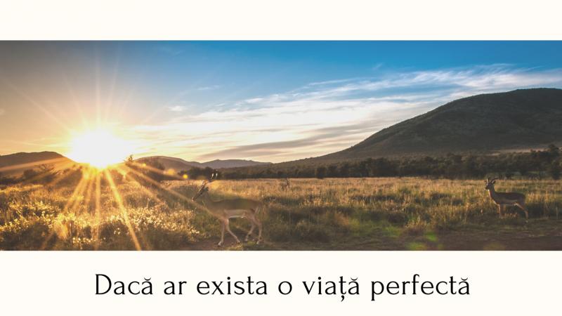 Dacă ar exista o viață perfectă